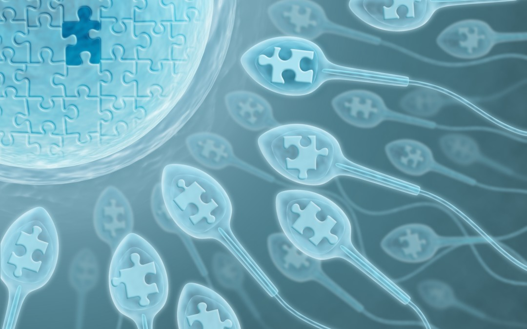 What's at the root of your fertility issues?